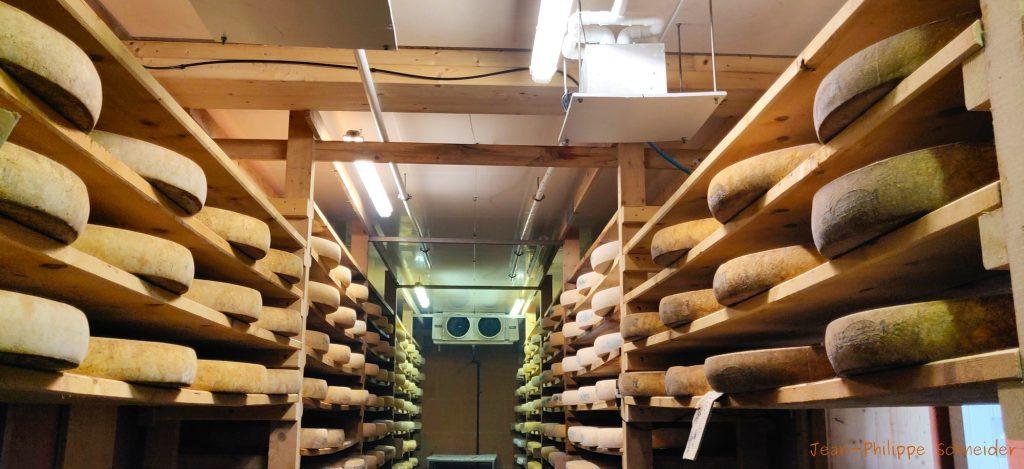 Meules de Comté de la cave de Chapelle-des-Bois
